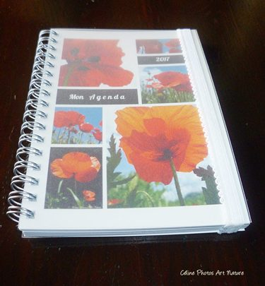 Agenda coquelicots 2017 de Céline Photos Art Nature