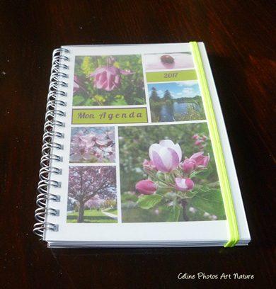 Agenda fleurs roses 2017 de Céline Photos Art Nature
