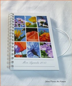 Agenda de poche 2015 de Céline Photos Art Nature quatre saisons