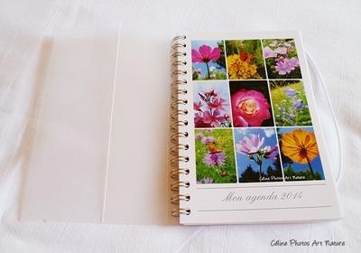Agenda de poche fleurs et papillons