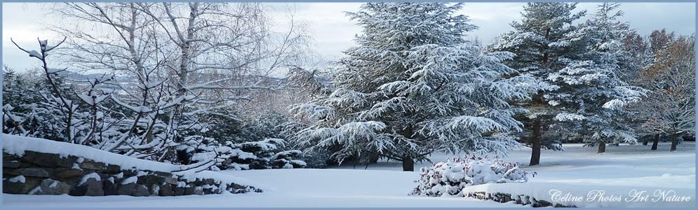 Bannière hiver 2017 2018 de Céline Photos Art Nature