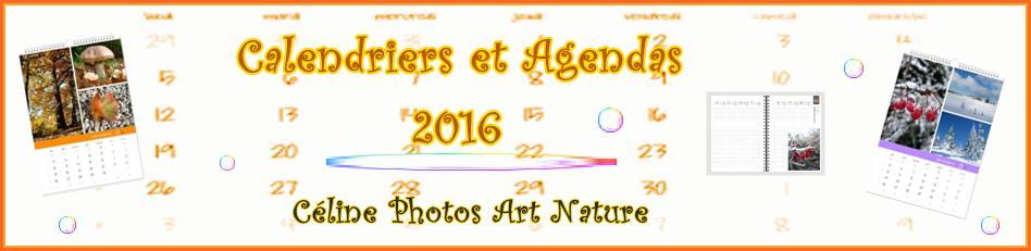 Bannière des calendriers et agendas 2016 de Céline Photos Art Nature