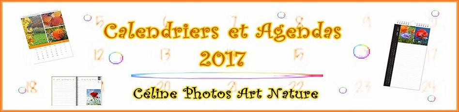 Bannière des calendriers et agendas 2017 de Céline Photos Art Nature