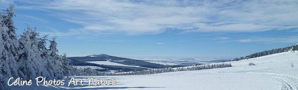 Bannière hiver 2014 2015 de Céline Photos Art Nature