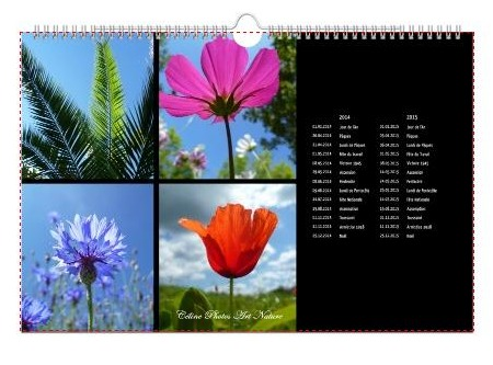 Calendrier mural 2014 panoramique de Céline Photos Art Nature couverture grand format
