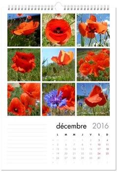 Calendrier coquelicot 2016 de Céline Photos Art Nature décembre