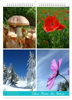 Calendrier mural format A3 2016 de Céline Photos Art Nature
