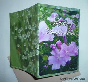 Carte double d`anniversaire avec des fleurs roses de montagne