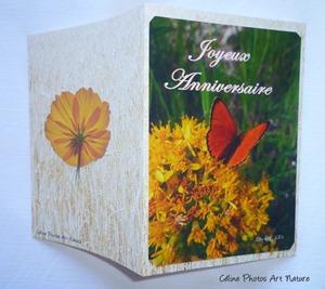 Carte double d`anniversaire avec des fleurs jaunes et un petit papillon orange