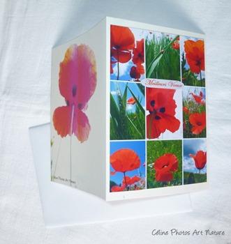 Carte double Meilleurs Voeux Coquelicot de Céline Photos Art Nature