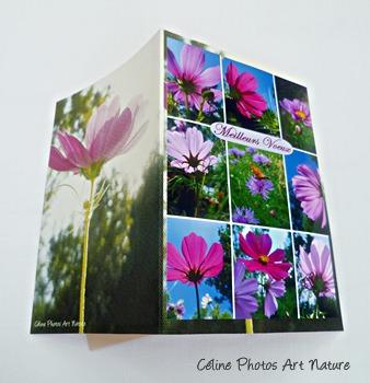 Carte double Meilleurs Voeux Cosmos rose  de Céline Photos Art Nature
