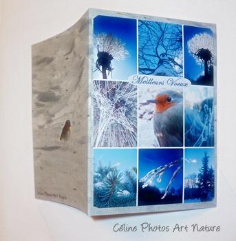 Carte double Meilleurs Voeux Rouge-gorge de Céline Photos Art Nature