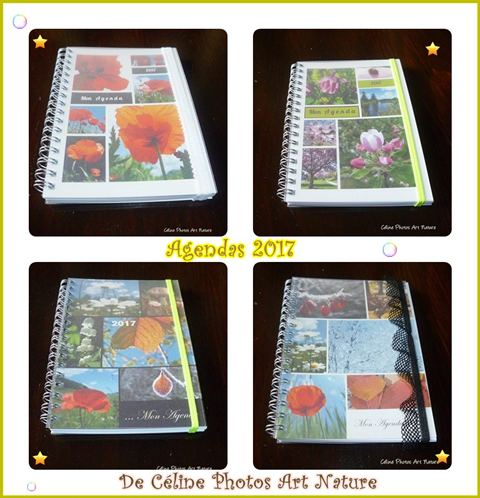 Agendas 2017 de Céline Photos Art Nature