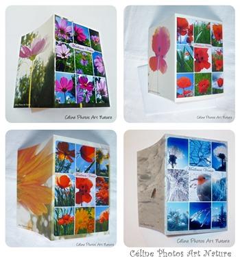 Combinaison  de cartes faites main Meilleurs Voeux de Céline Photos Art Nature