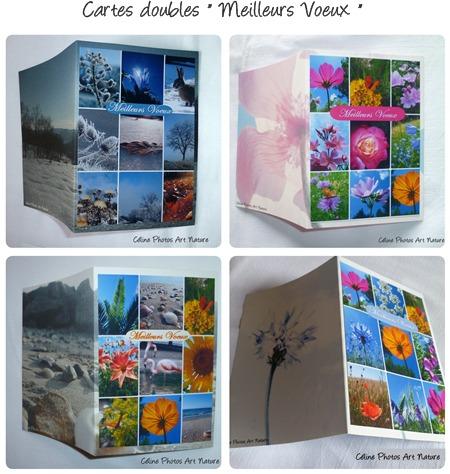 Combinaison  de cartes faites main sur Meilleurs Voeux de Céline Photos Art Nature