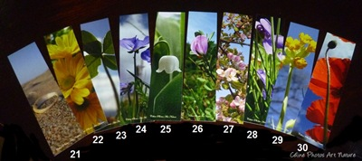 Marque-pages avec les photos de Céline Photos Art Nature