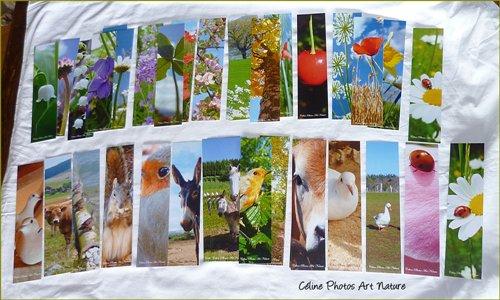 Marque-pages de Céline Photos Art Nature