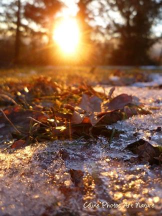 Coucher de soleil automnal de Céline Photos Art Nature