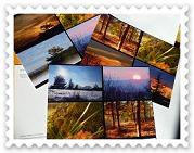 Cartes postales du site Céline Photos Art Nature( lot de 10 cartes)