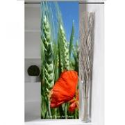 Panneau japonais blé et Coquelicot de Céline Photos Art Nature