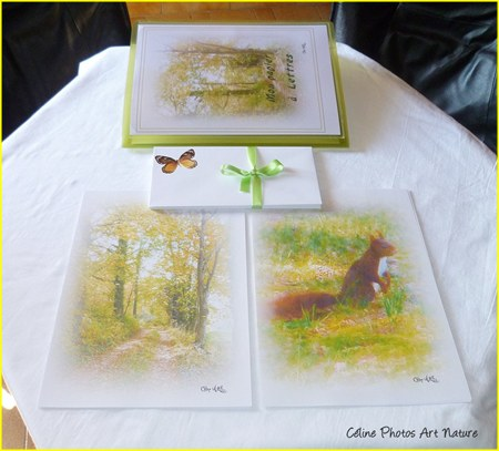 Papier à lettres Balade dans les bois de Céline Photos Art Nature