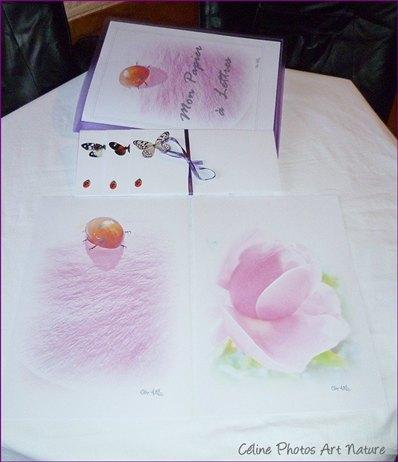Papier à lettres Fleurs de roses de Céline Photos Art Nature