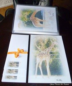Papier à lettres Girafes de Céline Photos Art Nature