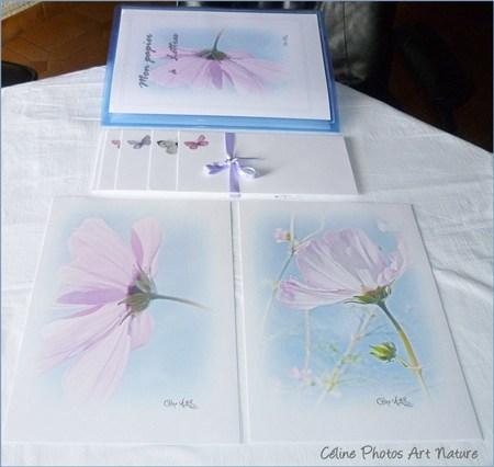 Papier à lettres bleu et rose de Céline Photos Art Nature