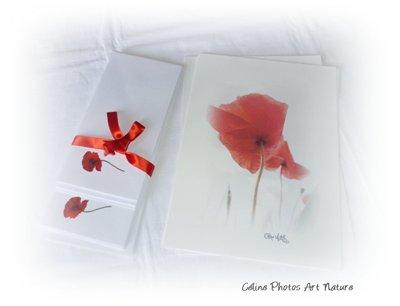 Papier à lettres coquelicot de Céline Photos Art Nature