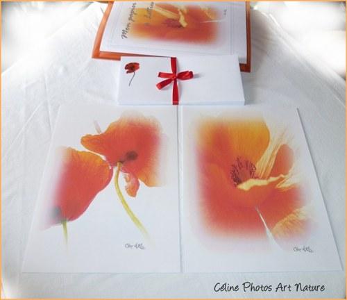 Papier à lettres coquelicot de Céline Photos Art Nature 2014