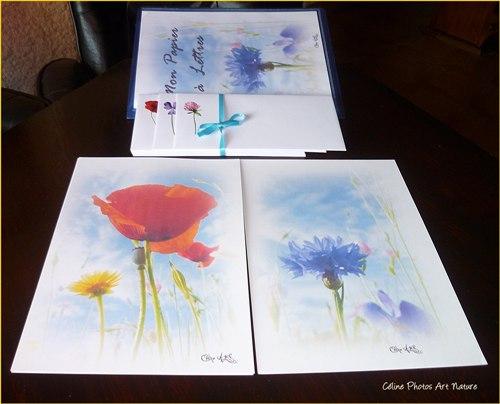 Papier à lettres Fleurs des champs de Céline Photos Art Nature