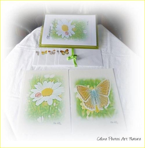 Papier à lettres vert anis de Céline Photos Art Nature