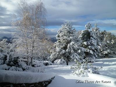 Paysage de neige de Céline Photos Art Nature