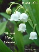 Photo de Céline Photos Art Nature d`un brin de muguet pour le 1er mai 2011 .