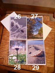 Lot de 4 cartes doubles personnalisables 10.5x15cm