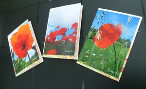 Lot de 3 cartes coquelicot