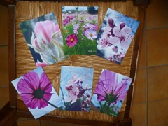Lot de 5 cartes doubles personnalisables10,5x15cm