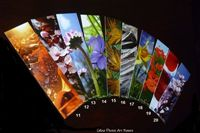 Lot de 10 marque-pages de Céline Photos Art Nature
